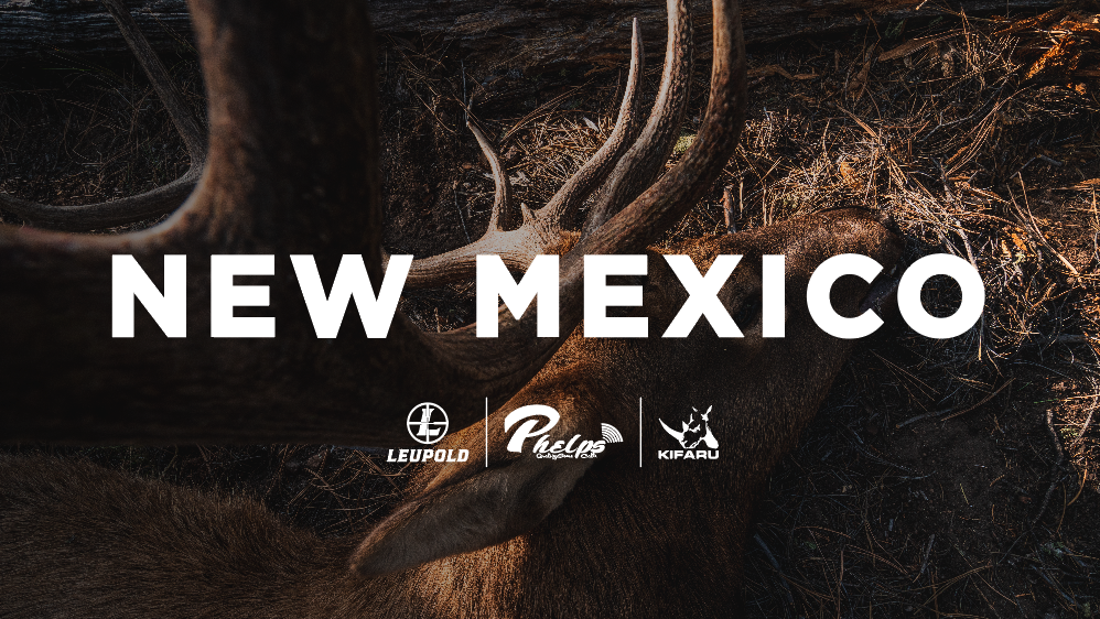 NEW MEXICO - Archery Elk Hunt with Phelps Game Calls
