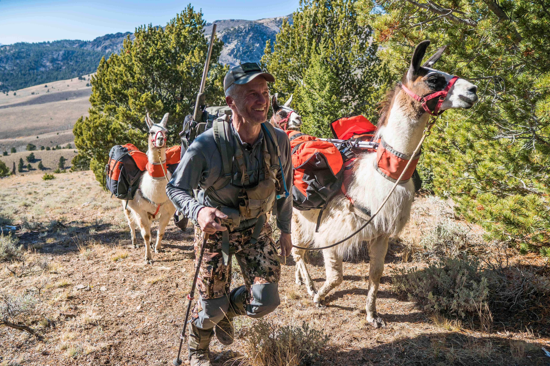 Marcus the Public Lands Llama: Big Sky Backcountry Hunting